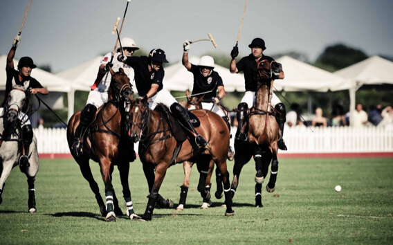 Hamptons Polo (Bridgehampton)